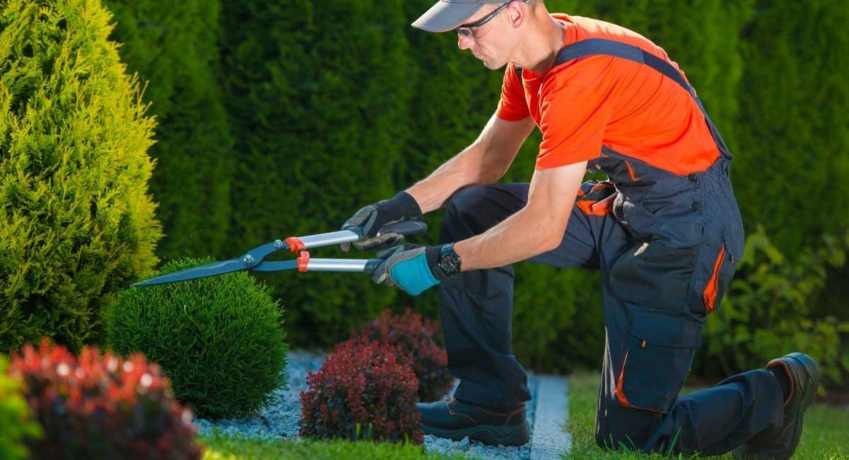 How to Start a Landscaping Business in Just 9 Steps
